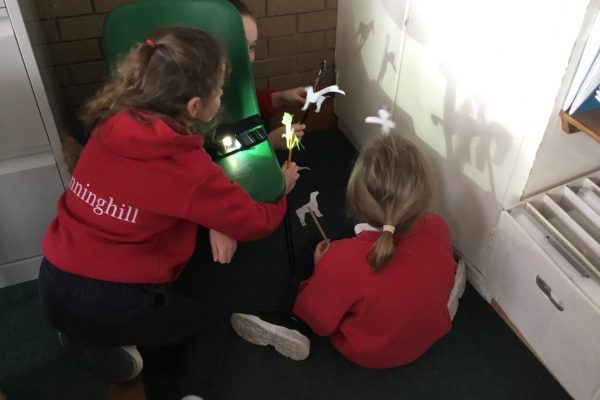 Science F3 Investigating Light & making shadows
