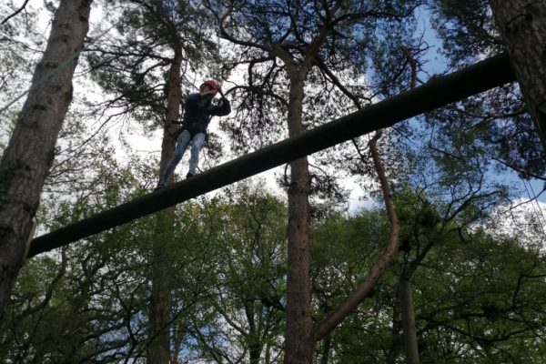 On the high ropes!